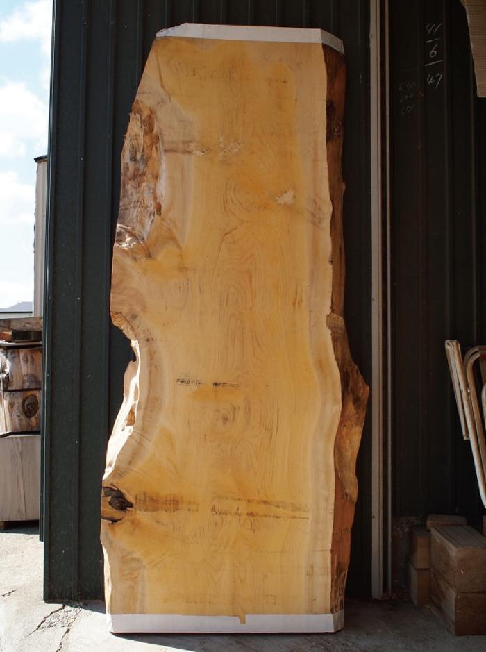 木製看板用の木