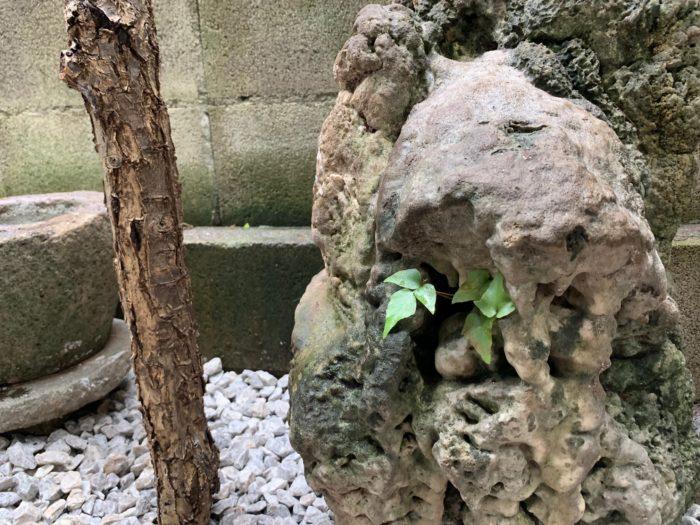 お庭づくり(植栽)と看板デザイン (18)