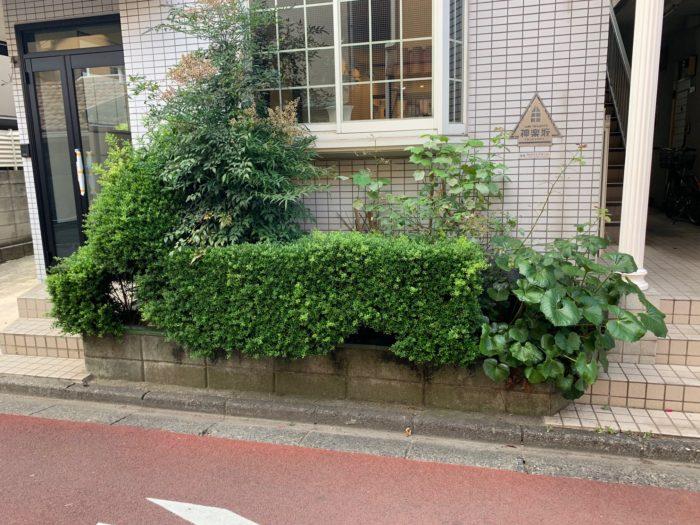 お庭づくり(植栽)と看板デザイン (4)