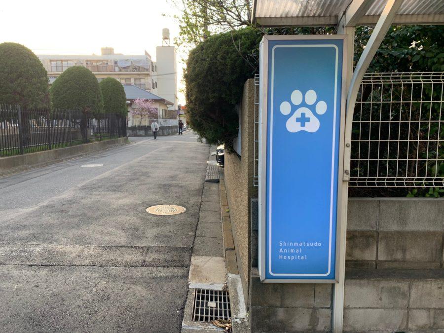 動物病院の看板 (3)